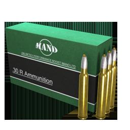 .30 R Ammunition